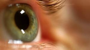 Sistema poderá recuperar a visão de vitimas de doenças (Foto: Reprodução/Veja)