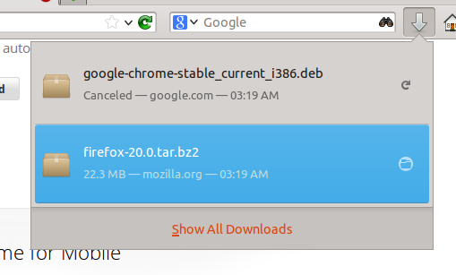 download-manager-firefox20
