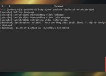 Youtube-dl no Ubuntu: baixe vídeos em vários sites de um jeito bem simples e rápido