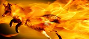 Como experimentar as últimas versões do Firefox no Ubuntu