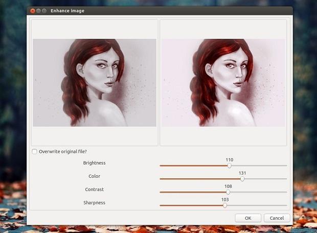 Como manipular imagens no Nautilus ou Nemo com a extensão Image Tools