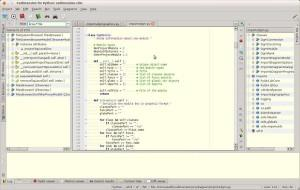 IDE Python codimension
