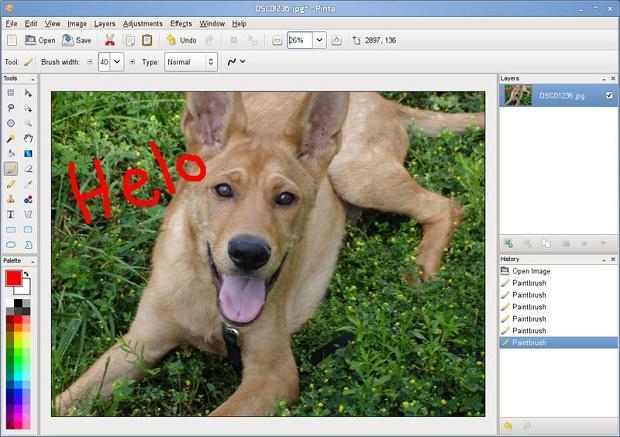 Tenha um editor de imagens simples e completo com o app Pinta