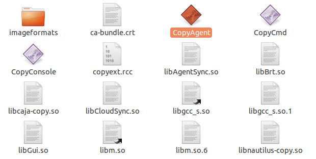 agente-copy