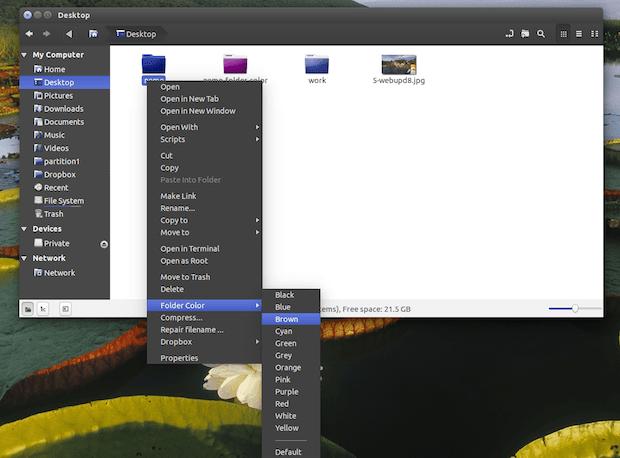 nemo-folder-color