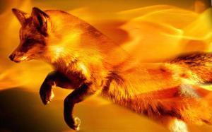 Lançado Firefox 56 com uma ferramenta de captura de tela embutida