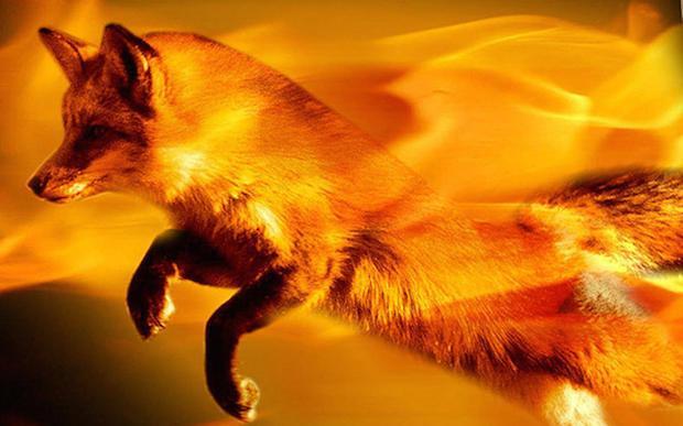 Lançado o Firefox 55 com suporte a WebVR e outras novidades