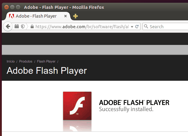 Usando uma versão desatualizado do Adobe Flash Player no PC? Cuidado!