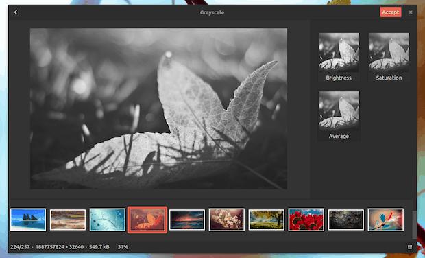 visualizador de imagens