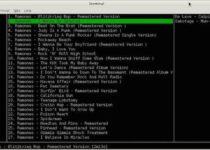 Spotify no Linux via Terminal: instale e experimente Sconsify