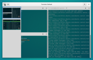 Como instalar o emulador de terminal Terminix/Tilix no Ubuntu e derivados