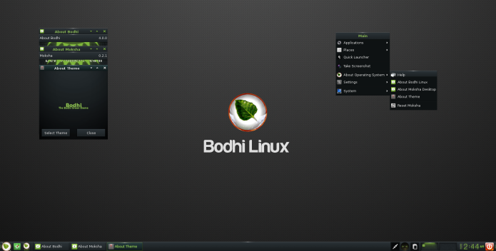 Bodhi 4.0 já está disponível para download