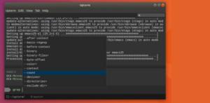 Terminal e IDE? Como Instalar o Upterm no Linux