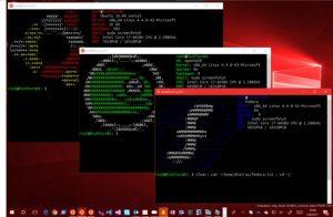 WSL-DistroLauncher aumentará as opções de distros Linux no Windows