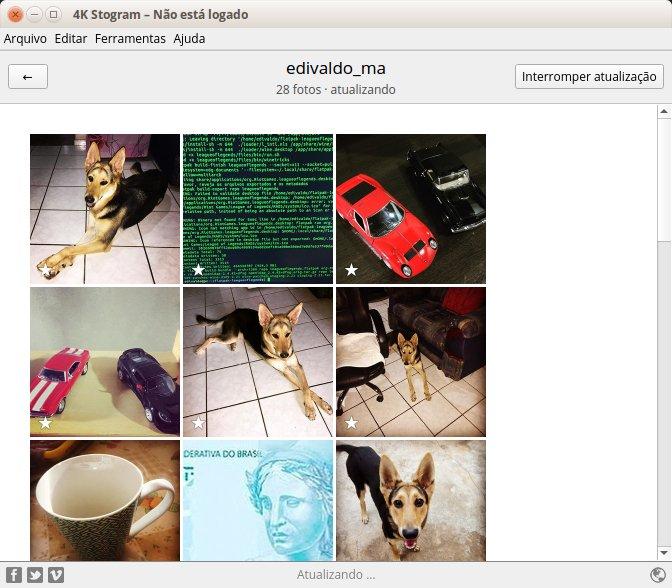 Como instalar o baixador de Instagram 4K Stogram no Linux