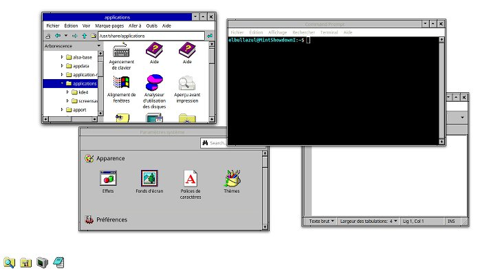 Como instalar o bizarro tema Windows 3.11 no Linux