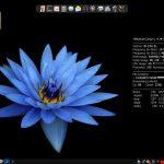 4MLinux 25 lançado com melhoria no tratamento de certificados CA