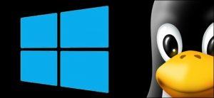 Preciso de uma licença para usar o Windows no Linux?