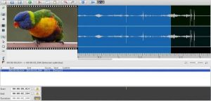 Como instalar o editor de legendas Jubler no Linux via AppImage