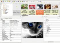 Como instalar o visualizador de imagens XnView MP no Linux via Snap
