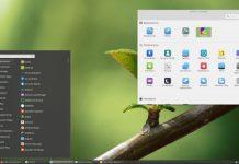 Como instalar o ambiente Cinnamon no Arch Linux e derivados