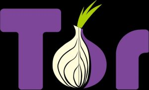Como instalar o seguro cliente Tor no Linux via Snap