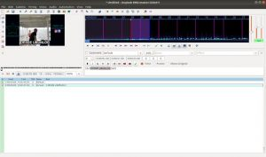Como instalar o editor de legendas Aegisub no Ubuntu e derivados
