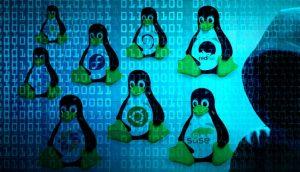 Encontradas duas Vulnerabilidades DoS no kernel Linux, sem correção