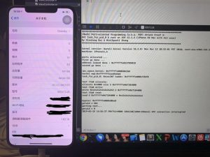 Descoberto um exploit para iOS 12.1.2 no iPhone XS