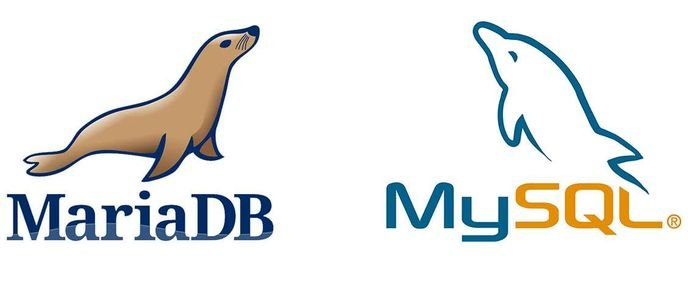 Como instalar o MariaDB ou MySQL no Ubuntu 19.04