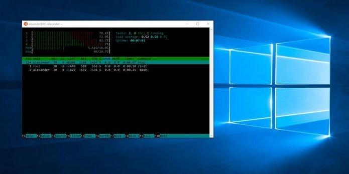 Microsoft lançou o Windows Subsystem for Linux 2 com melhorias de desempenho