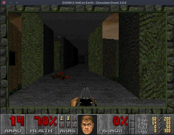 chocolate doom engine no linux - Como instalar o jogo arcade Ri-li no Linux via Flatpak