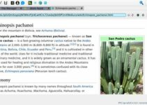 Como instalar o navegador Galacteek no Linux via arquivo AppImage
