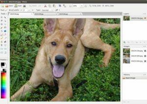 Como instalar o editor de imagens Pinta no Linux via Flatpak