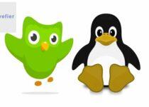 Como instalar o app de aprendizado de idiomas Duolingo no Linux