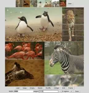 Como instalar o Mountain Tapir Collage Maker no Linux via Snap