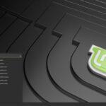 Clement Lefebvre revelou o codinome do Linux Mint 19.3: Tricia