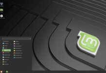 Clement Lefebvre revelou o codinome do Linux Mint 19.3: Tricia