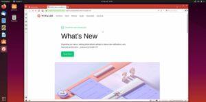 Vivaldi 2.9 lançado com melhorias de desempenho e mais opções de menu