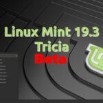 "Linux Mint 19.3 ""Tricia"" Beta já está disponível para download"
