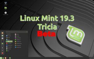 Linux Mint 19.3 Tricia Beta lançado oficialmente - Confira as novidades e baixe