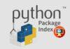 Pacote Python malicioso disponível no repositório PyPI por um ano