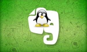 Cliente oficial do Evernote para Linux chegará este ano
