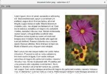 Como instalar o visualizador de arquivos raster RasterView no Linux via Snap