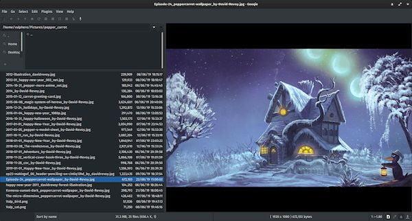 como instalar o visualizador de imagens geeqie no linux via flatpak - Como instalar o visualizador de imagens Geeqie no Linux via Flatpak