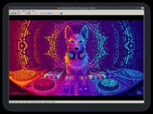 Como instalar o visualizador de imagens IrfanView no Linux via Snap