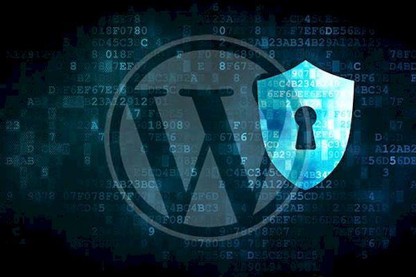 Falha em plug-in do WordPress permite criar contas de administrador