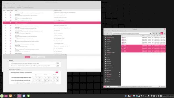 Linux Mint lançou um app para compartilhar arquivos entre Linux