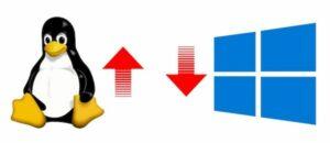 Linux e macOS aumentaram sua participação no mercado, Windows 10 caiu