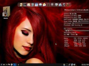 4MLinux 33 lançado com ISOs híbridos, nnn File Manager e Mesa 20